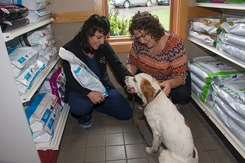 Grand Rapids Veterinary Clinic carries a full line of pet foods and nutritional supplements.